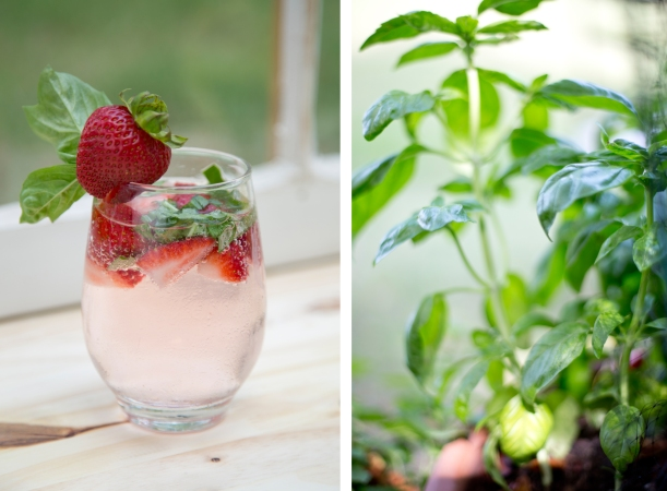 Strawberry Basil Water